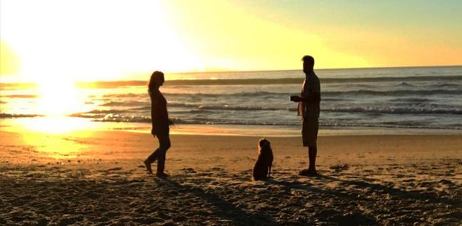 Conselho aos Desesperados  Por um Par: Continuem Sozinhos