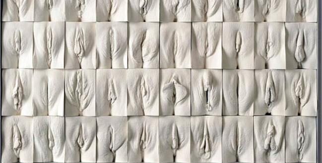 Beleza é Fundamental?  Uma Análise Sobre a Estética das Vaginas
